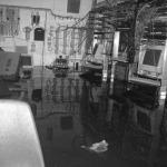 Hurricane Evacuation Specialists - Dallas Colo is Safe Haven!